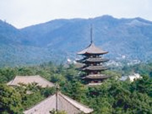 法隆寺・西の京と万葉ドライブ