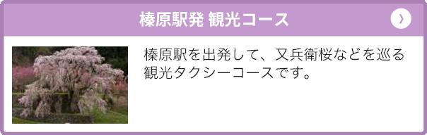 榛原駅発 観光コース