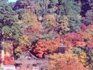 談山神社と三菩薩