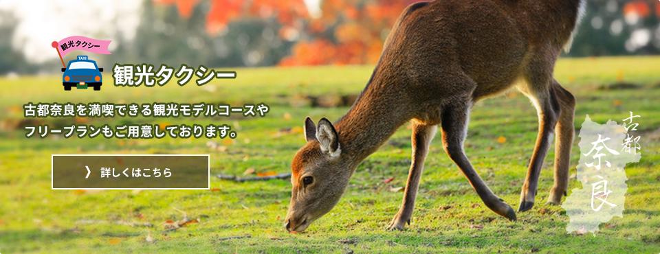 奈良近鉄タクシーの観光タクシー